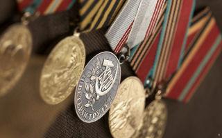 Особенности получения льгот для ветеранов труда по транспортному налогу