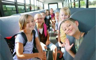 Особенности составления доверенности на провоз ребенка без родителей и вывоз за границу