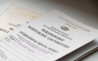 Отличия между национальным водительским удостоверением и международными правами