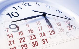Какие предусмотрены сроки оплаты штрафов ГИБДД